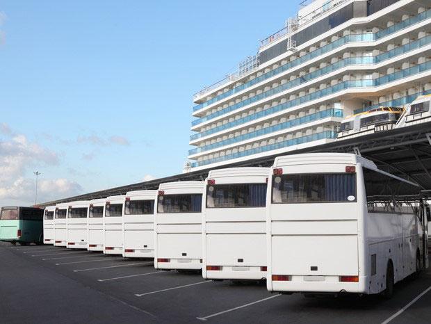 Mit vielen Bussen auf Landausflug.